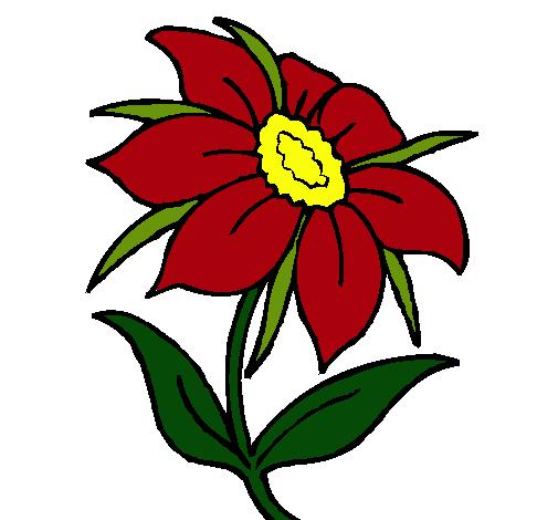 Flower Dibujo: Dibujo De Flor Silvestre Pintado Por Mishell En Dibujos