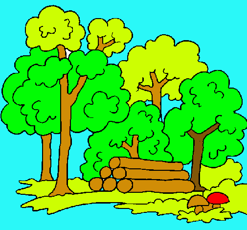 Dibujo De Bosque Pintado Por Naturaleza En Dibujosnet El Día 25 02