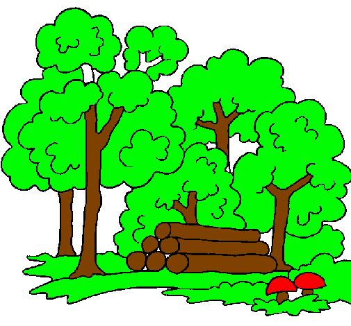 Dibujo de Bosque pintado por Boske en Dibujos.net el día 04-03-11 a las 10:23:46. Imprime, pinta o colorea tus propios dibujos!