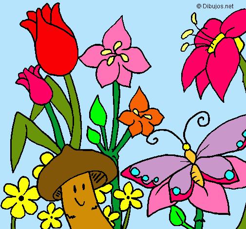 Dibujo De Fauna Y Flora Pintado Por Primavera En Dibujosnet El Día
