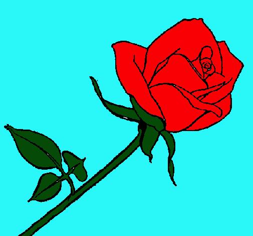 Dibujo De Rosa Pintado Por Rosal En Dibujosnet El Día 02 04 11 A