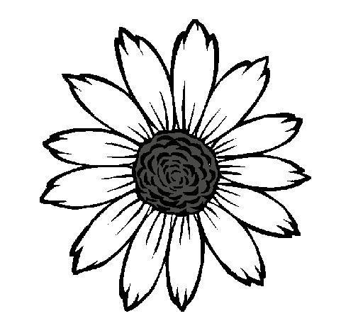 Dibujo De Girasol Pintado Por Savvv En Dibujosnet El Día 20 04 11 A
