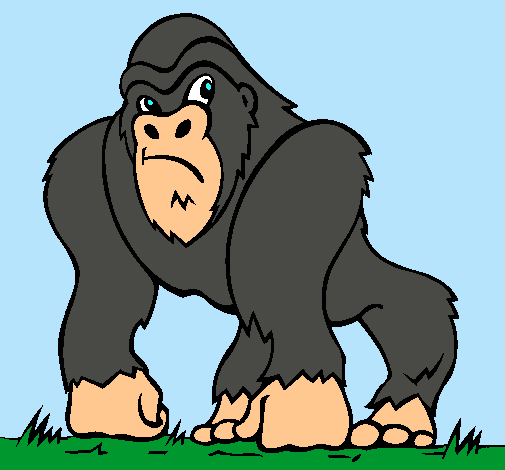 venta minorista be538 fac8e Dibujo de Gorila pintado por Gorila en Dibujos.net el día 26 ...