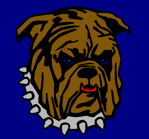 Dibujo De Bull Dog Pintado Por Chido En Dibujos Net El Dia 25 04 11