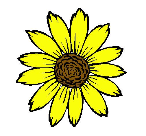 Dibujo de girasol pintado por ouboi en el d a - Dessin de tournesol ...