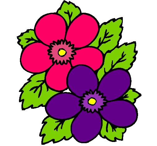 Dibujo De Flores Pintado Por Plantas En Dibujos Net El D 237 A