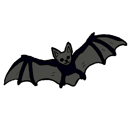 Dibujo De Murciélago Volando Pintado Por Murcielago En Dibujosnet