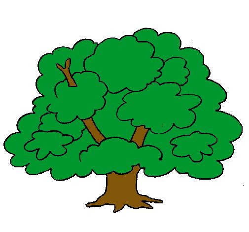 Dibujo De árbol Pintado Por Arbolito En Dibujosnet El Día 26 12 11