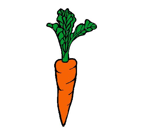 Dibujo De Zanahoria Pintado Por Cataaline En Dibujos Net El Dia 16 01 12 A Las 16 44 23 Imprime Pinta O Colorea Tus Propios Dibujos Las zanahorias blancas no tienen pigmentos y suelen tener un sabor más suave la zanahoria se incluye entre los alimentos bajos en calorías; zanahoria pintado por cataaline