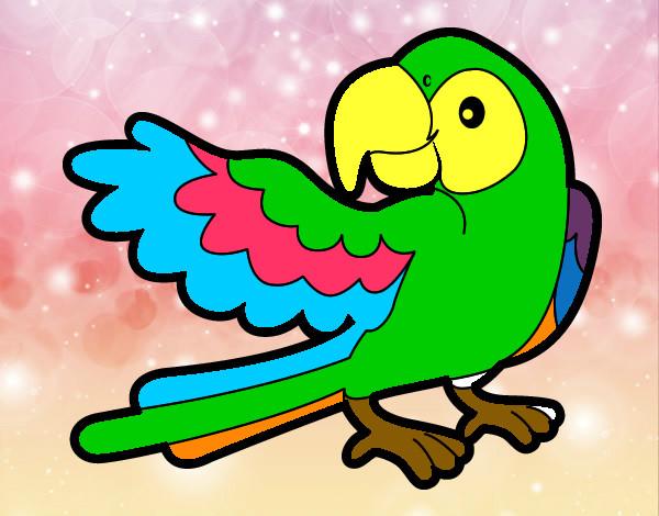 Dibujo De Perico Volador Pintado Por Lefevifi En Dibujos