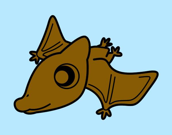 Dibujo De Volador Pintado Por Nicod En Dibujosnet El Día 06 03 12 A
