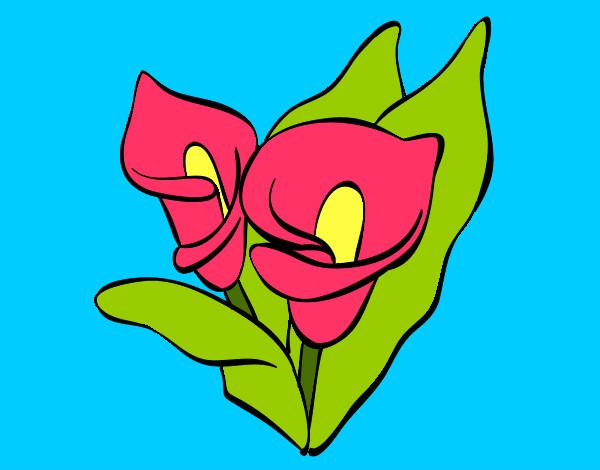 Dibujo De Una Flor Hermosa Pintado Por Ahri En Dibujosnet
