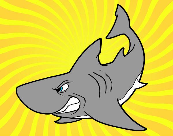 Dibujo De Tiburon Pintado Por Flopyrojas En Dibujosnet El