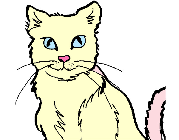 Dibujo De Gatita Mascara Pintado Por Yaiza22552 En Dibujosnet El