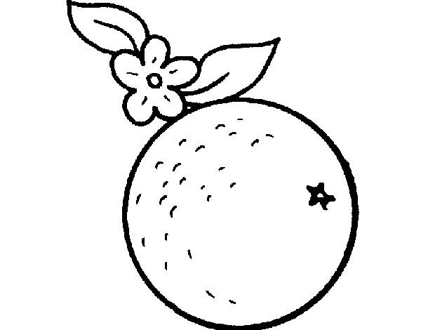 Dibujo De Naranja Pintado Por Leitomp En Dibujos Net El Dia 20 06