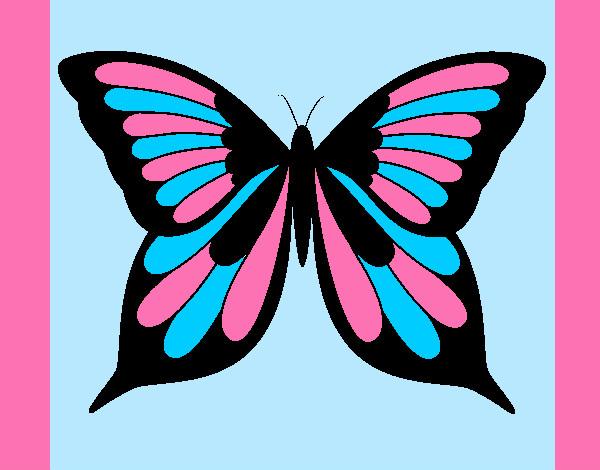 Dibujo De La Mariposa Colorida Pintado Por Desi10 En Dibujosnet El