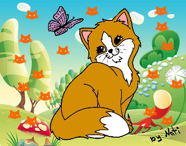 Dibujo De Gato Y Mariposa Pintado Por Aylenmaria En Dibujos Net El Día 08 10 12 A Las 19 51 32 Imprime Pinta O Colorea Tus Propios Dibujos