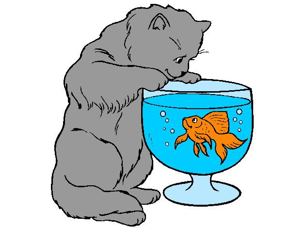 Dibujo De El Gato Mirando A Un Pez En Una Pecera Pintado Por