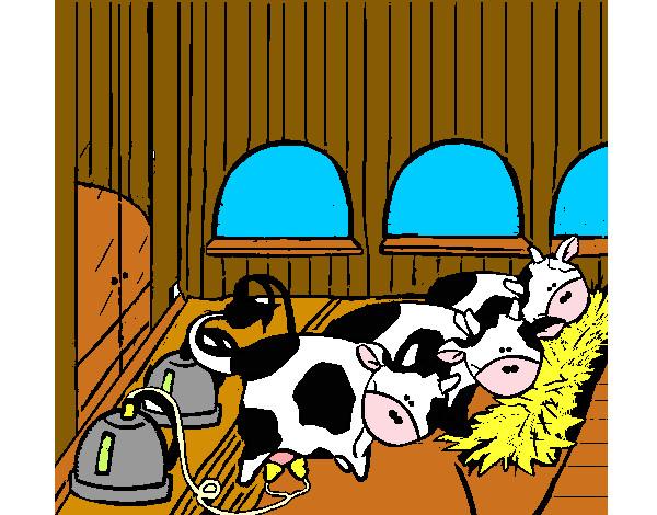 Dibujo De Vacas En El Establo Pintado Por Aletxa En Dibujos