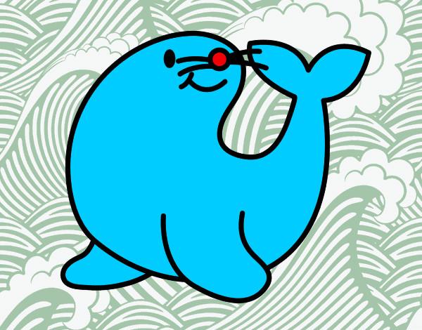 Dibujos De Focas Para Colorear Dibujos Net