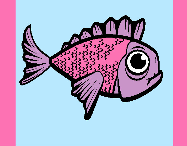 Dibujos De Animales Marinos Para Colorear Dibujosnet
