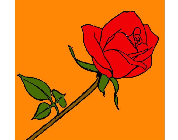 Dibujo De Rose Pintado Por Spring En Dibujosnet El Día 10 04 13 A