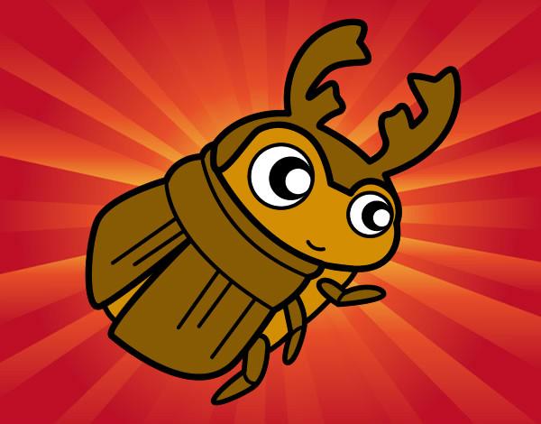 Dibujos De Escarabajos Para Colorear Dibujosnet