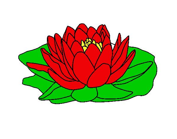 Dibujo De Flor Tropical Pintado Por David25 En Dibujos Net El Dia 08