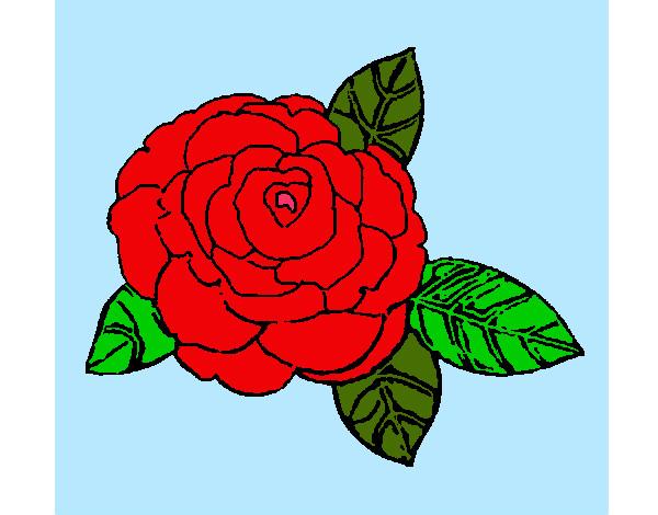 Flores Calcar Dibujos Para Colorear Faciles