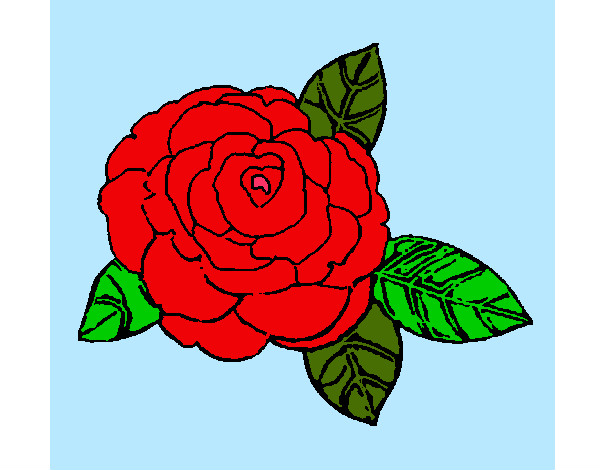 Dibujos De Rosas Para Colorear Dibujosnet