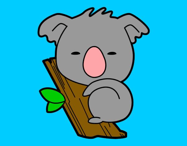 Dibujos De Koalas Para Colorear Dibujosnet
