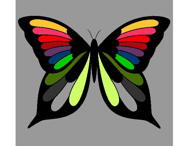 Dibujos De Mariposas Para Colorear Dibujos Net