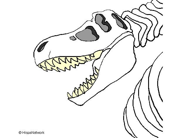 Imagenes De Dinosaurio T Rex Para Colorear - Best Dinosaur Gallery 2018