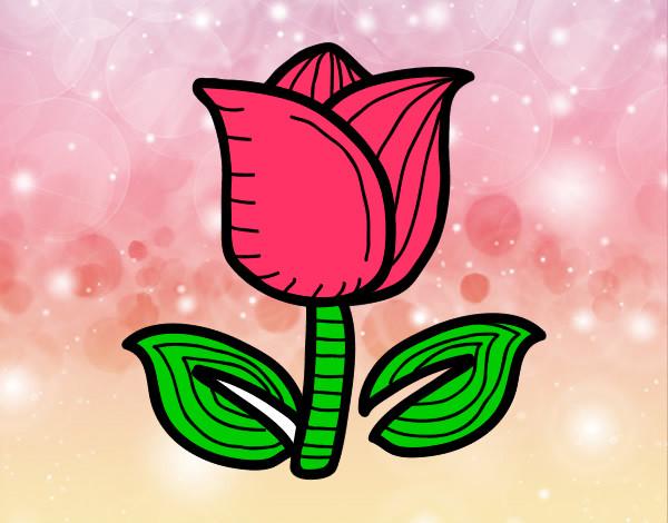 Dibujo De La Flor Bonita Pintado Por Luna28 En Dibujosnet El Día 28
