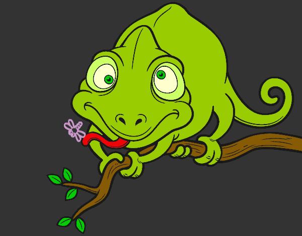 Dibujo de Camaleón en una rama pintado por Queyla en Dibujos.net ...