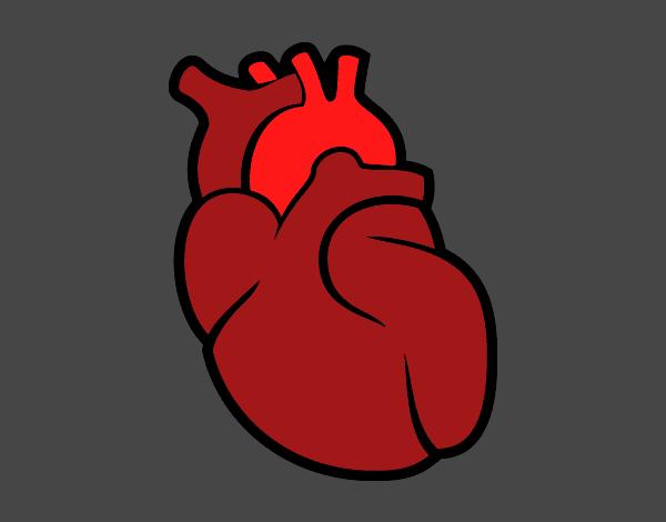 Dibujo De El Corazón Pintado Por En Dibujosnet El Día 24 04 15 A