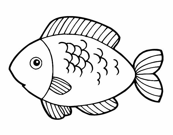 Dibujo De Pescado Pintado Por En Dibujosnet El Día 22 04 15 A Las