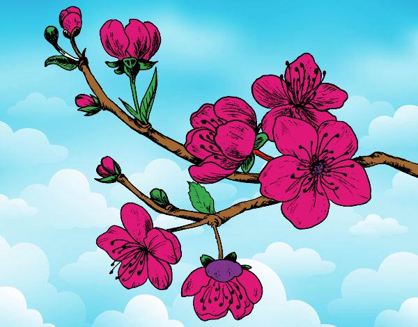 Dibujo De Arbol A La Mitad Con Flores Pintado Por En