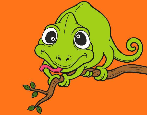 Dibujos De Reptiles Para Colorear Dibujosnet