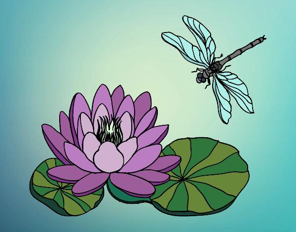 Dibujo De Flor De Loto Pintado Por Queyla En Dibujosnet El Día 08