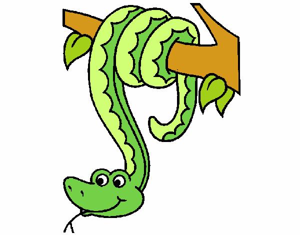 Dibujo De Serpiente Colgada De Un árbol Pintado Por En Dibujosnet