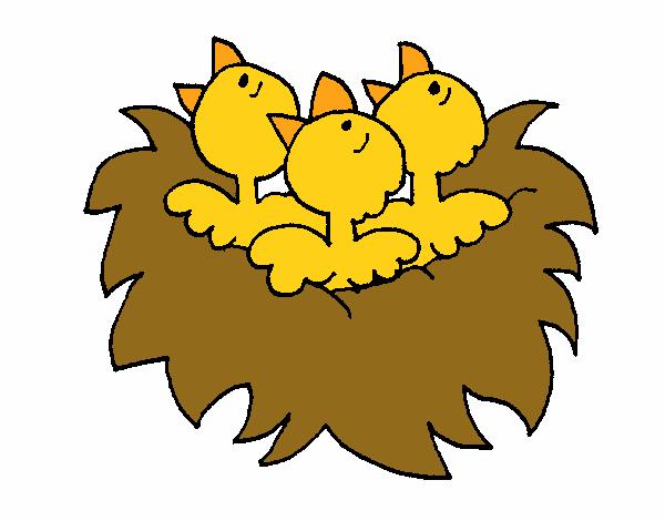 Dibujo De Nido De Pájaritos Pintado Por En Dibujosnet El