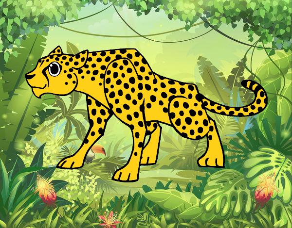 Dibujo De Jaguar Viendo Pintado Por En Dibujosnet El Día 15 08 15 A