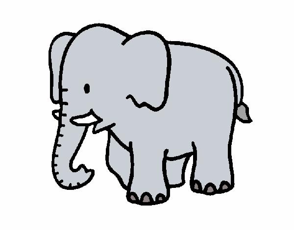 Dibujo de Elefante bebe pintado por en Dibujos.net el día 20-08-15 a ...