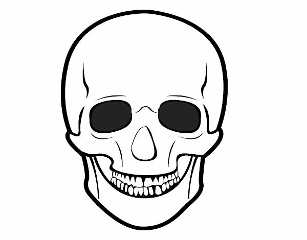 Dibujo De Cráneo Humano Pintado Por En Dibujosnet El Día 31 08 15 A