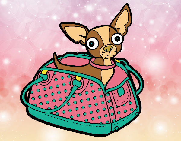 Dibujo De Chihuahua De Viaje Pintado Por Marinrubi En