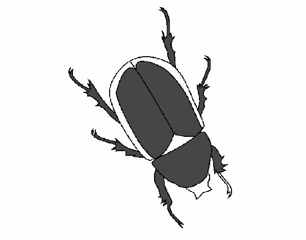 Dibujo de Escarabajo pintado por en Dibujos.net el día 30-11-15 a ...