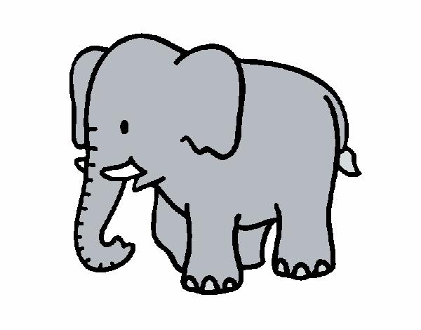 Dibujo de Elefante bebe pintado por en Dibujos.net el día 08-03-16 a ...