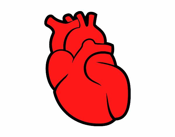 Dibujo De El Corazón Pintado Por En Dibujosnet El Día 17 04 16 A