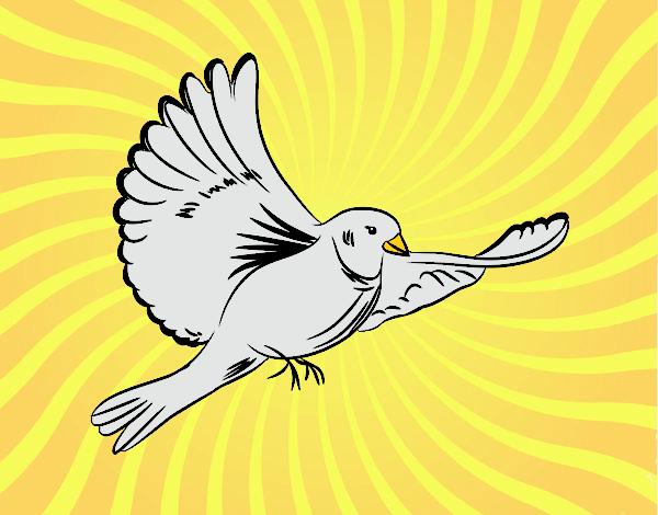 Dibujo De Paloma Volando Pintado Por En Dibujosnet El Día 15 04 16